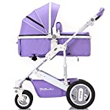 Olpchee Foldable High View Anti-shock Convertible Carriage Infant Baby Stroller Two-way Luxury Newborn Pushchair Pram Travel System (Violet)