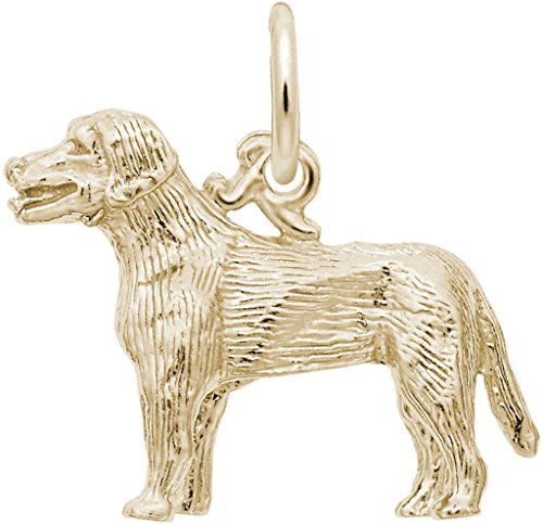 Retriever Gold Charm Plated Dog (Rembrandt Labrador Retriever Dog Charm - Metal - Gold Plated Sterling Silver)