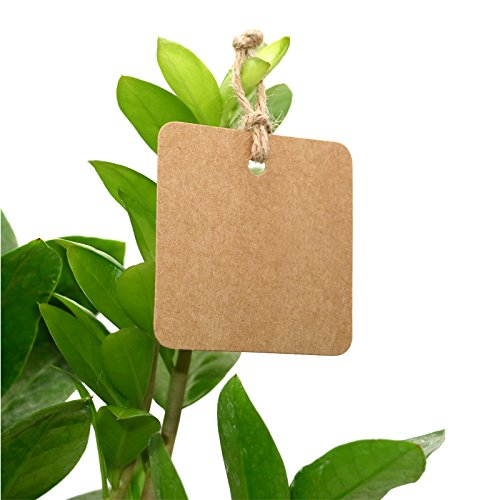 Price Tags DIY Tags jijAcraft 100 PCS Brown Square Kraft Paper Gift Tags with 30 M Jute Twine for Crafts Hang Tags Luggage Tag