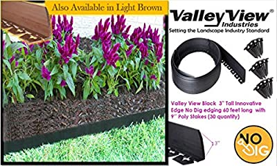 Valley View NDETC-60 Black 3'' Tall Innovative Dig 60 feet Long with 9'' Poly Stakes (30 Quantity) Lawn Edging, Garden Border