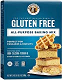 King Arthur Flour Gluten Free All-Purpose Baking Mix, 24 Ounce (Pack of 6)