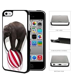 Circus Elephant Balancing On Ball Hard Plastic Snap On Cell Phone Case Apple iPhone 5c hjbrhga1544