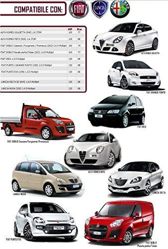 Kit distribución Fiat Bomba Agua 71754562+PA1085: Amazon.es: Coche y moto