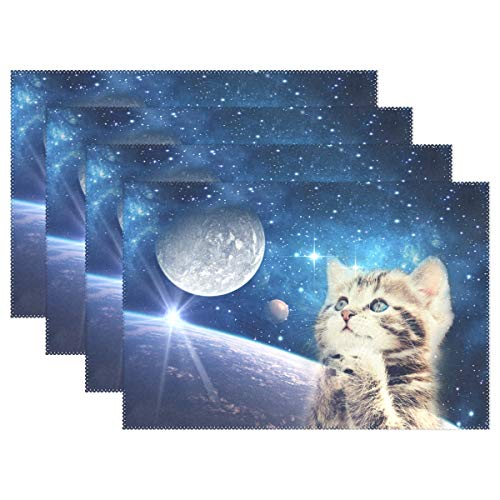 - Fengye Placemats Blue Galaxy Cat Moon Kitchen Table Mats Resistant Heat Placemat for Dining Table Washable 1 Piece