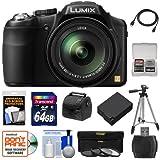 Panasonic Lumix DMC-FZ200 Digital Camera (Black) with 64GB Card + Case + Battery + 3 UV/CPL/ND8 Filters + Tripod + Accessory Kit