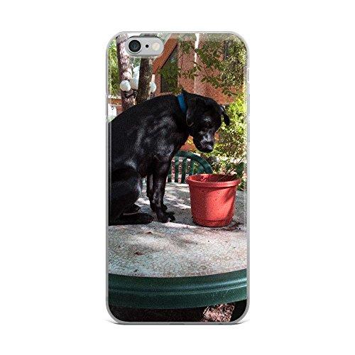 Curious Black Lab iPhone Case (iPhone 6 Plus/6s Plus)