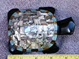 Hand Carved Polished Black Obsidian Turtle with Abalone - Best Reviews Guide