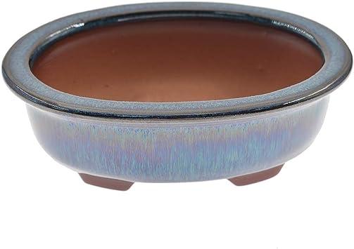 Amazon Com Lychee Chinese Bonsai Pot Dark Green Glazed Flower Pot Planter Home Garden Decor Garden Outdoor