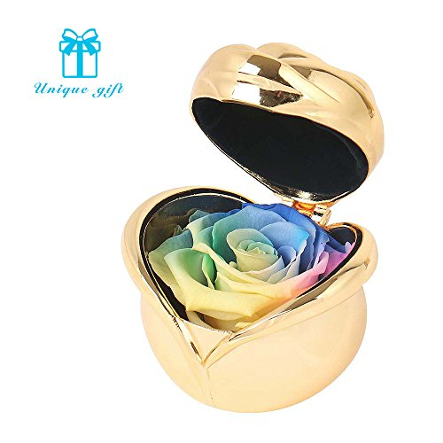 Best Gifts For Women,Preserved Flower Rose,Never Withered Roses,Upscale Immortal Flowers,Gifts For Women,Her,Girls,Sister, Mother's Day,Valentine's Day,Anniversary,Birthday,Wedding (C Rainbow Rose)