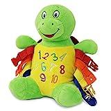 Buckle Toys - Bucky Turtle