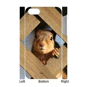 3D Bumper Plastic Case Of Squirrel customized case For Iphone 4/4s