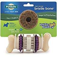 PetSafe Busy Buddy Bristle Bone Dog Toy, Chew Toy with Treats