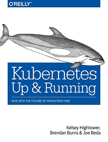 Kubernetes: Up and Running: Dive into the Future of Infrastructure [Kelsey Hightower - Brendan Burns - Joe Beda] (Tapa Blanda)