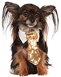 Gold Sequin Tie for Pets