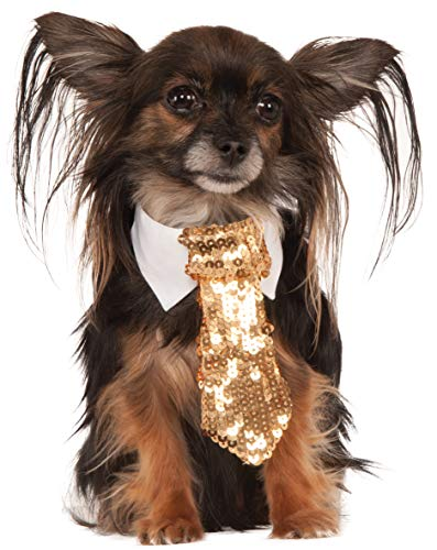 Gold Sequin Tie for Pet, Small/Medium]()