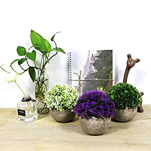 CEWOR 4 Pack Artificial Mini Plants Plastic Mini Plants Topiary Shrubs Fake Plants for Bathroom,House Decorations 5