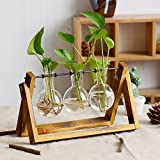 Flower Stand, Hydroponics Geometry Crystal Ball Transparent Glass Vase Container Old Wooden Frame Desktop Pot No Soil Cultivation Plant Family Gardening Bracket Decoration Indoor Hanging Bottle