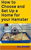How to Choose and Set Up a Home for your Hamster
