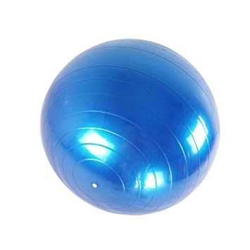 Amazon.com: Sports Yoga Balls Gym Balance Exercise Massage ...