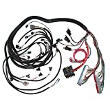 Speedway Motors GM Engine Wiring Harness, 1999-02 LS1