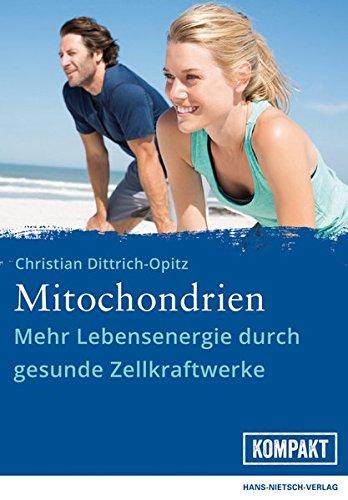 Mitochondrien: Mehr Lebensenergie durch gesunde Zellkraftwerke