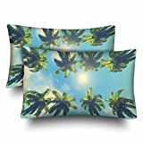 InterestPrint Hawaii Style Coconut Palms Tree Sun Blue Sky Summer Pillow Cases Pillowcase Standard Size 20x30 Set of 2, Rectangle Pillow Covers Protector for Home Couch Sofa Bedding Decorative