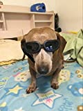 Enjoying Dog Sunglasses for Small Dogs Waterproof Dog Goggles Adjustable Sunglasses for Small Dogs or Cats - Black