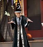 Aeromax Inc Boys' Wizard Costume Multicoloured One Size