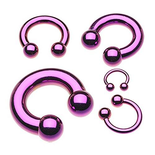 Inspiration Dezigns Purple Colorline PVD Basic Horseshoe Circular Barbell (Sold Individually) (6G, L: - Circular Purple Barbell