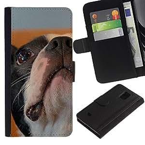 Stuss Case / Funda Carcasa PU de Cuero - Boston Bulldog Terrier French Dog Bull - Samsung Galaxy S5 Mini, SM-G800