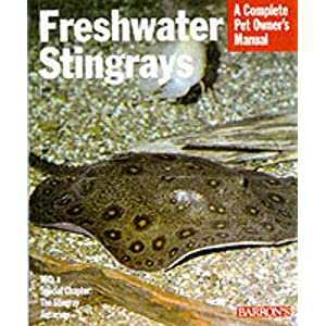 Freshwater Stingrays (Complete Pet Owner's Manuals) 26