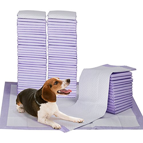 Petphabet 100 Pack Dog Pee Pads 23 by 24 Inches,Lavender Scented Dog Training Pads with Attractant