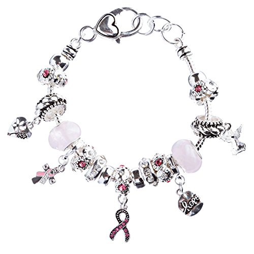 - ACCESSORIESFOREVER Women Pink Ribbon Jewelry Crystal Rhinestone Adorable Charms Link Bracelet B481 Silver