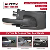 AUTEX 2pcs Interior Door Handles Front/Rear Left