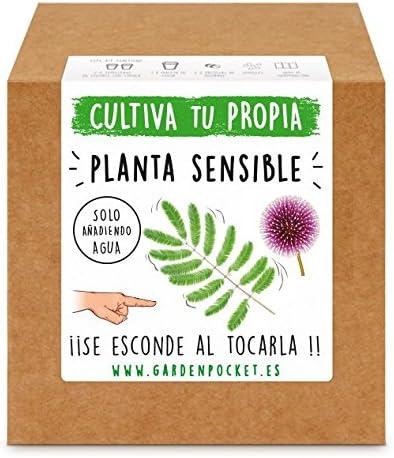 Garden Pocket - Kit Cultivo Planta Sensible: Amazon.es: Jardín