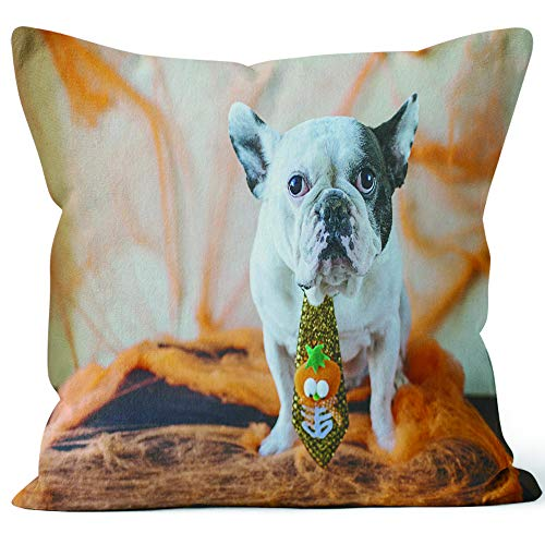 Nine City Dog with Halloween Costume Throw Pillow Cover,HD Printing for Sofa Couch Car Bedroom Living Room -