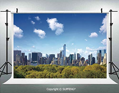 Background Manhattan Skyline with Central Park in New York City Midtown High Rise Buildings 3D Backdrops for Interior Decoration Photo Studio Props -