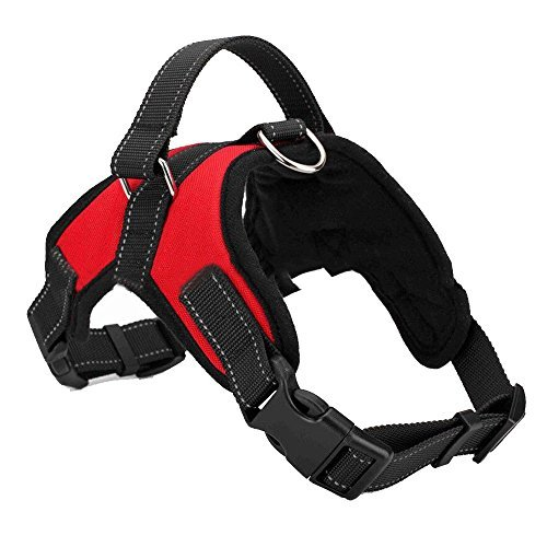 Heavy Duty Harness (Mr.Dog No-Pull Dog Soft Leash Harness and Heavy Duty Denim Dog Training Walking Leash Collar No Choke Design All kinds of Size (Large, Red))