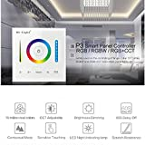 Touch Wall Switch LED Panel Controller DC12-24V RGB RGBW RGB + CCT LED Touch Switch Panel Controller Led Dimmer for Led Strip Panel Lamp Light Bulbs