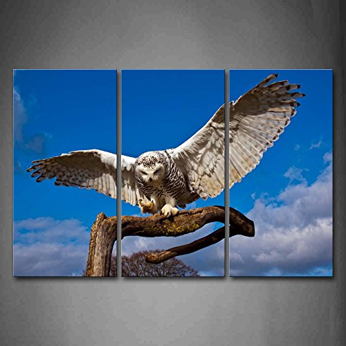First Wall Art - Snowy Owl Stand On Dry Wood Blue Sky Wall Art Painting The Picture Print On Canvas Animal Pictures For Home Decor Decoration (Snowy Owl Photo)