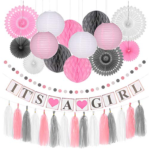 Pink Baby Shower Decorations for Girls - It's A Girl Party Banner, Paper Honeycomb Balls, Lanterns, Paper Circle Garland, Tassels and Fans - Baby Girl Shower Themed Complete Party Kit -
