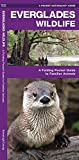 Everglades Wildlife: A Folding Pocket Guide to Familiar Animals (Wildlife and Nature Identification)