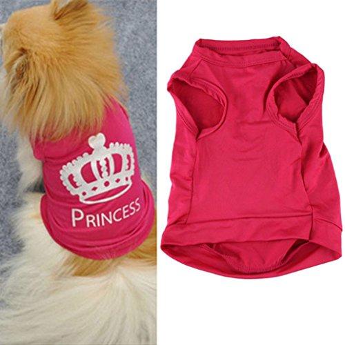 Perman 2016 Fashion Small Pet Dog Cat Cute Princess T-shirt Clothes Vest Summer Coat Puggy Costumes Hot (Doggy Clothing)