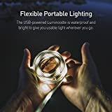 Luminoodle XL PLus - The Original Portable LED