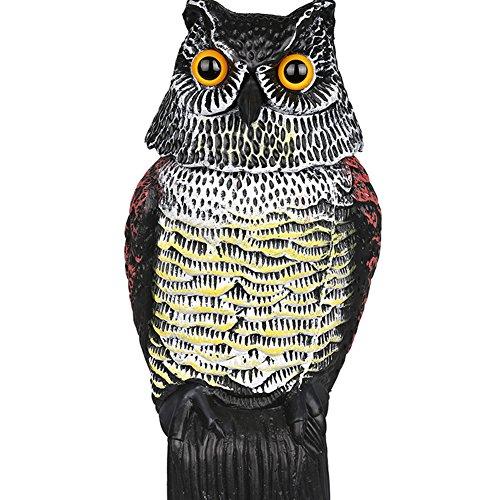 owl rotating head - 7