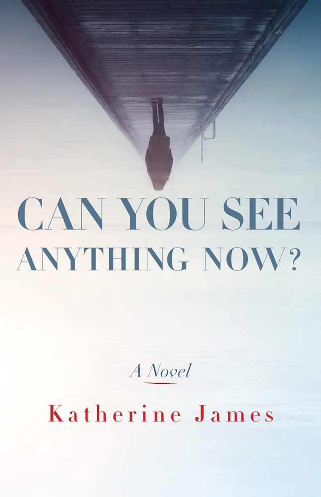 Can You See Anything Now?: A Novel (Paraclete Fiction