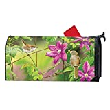 Magnet Works MailWrap - Wren with Purple Clematis