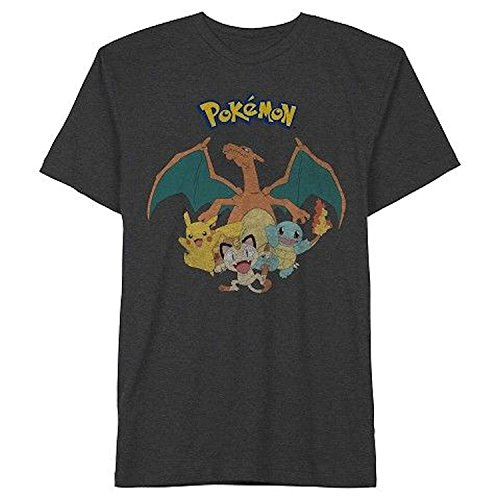 Pokemon Charizard Group Mens Tee Shirt (Small, 34/36)