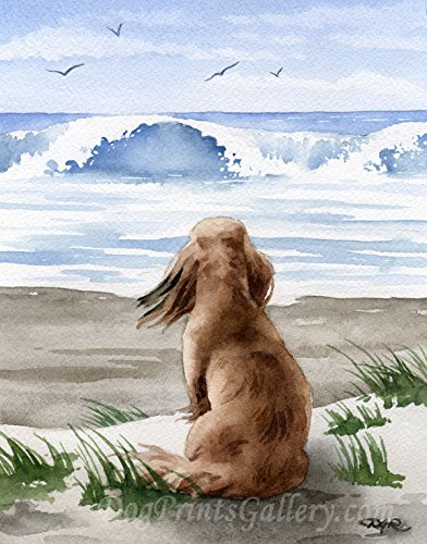 - Long Haired Dachshund at The Beach Art Print by Watercolor Artist DJ Rogers