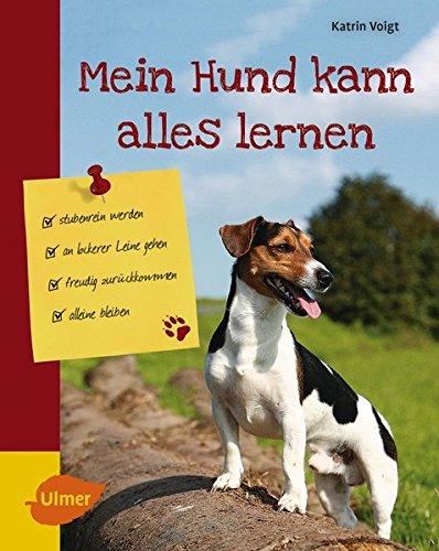 Mein Hund kann alles lernen: Stubenrein werden, an lockerer Leine gehen, freudig zurückkommen, alleine bleiben